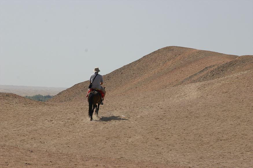 사막 말타기.jpg